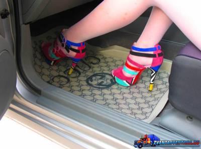 Выбор и покупка автомобильных ковриков
